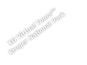 XD Virtual Tours™
